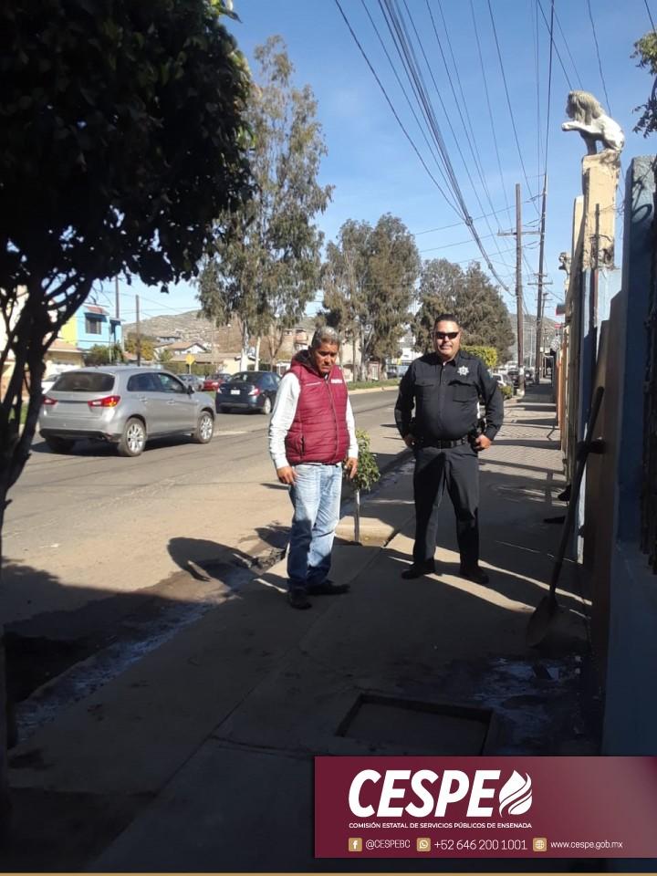 CESPE y la Policia Municipal actúan contra el clandestinaje.
